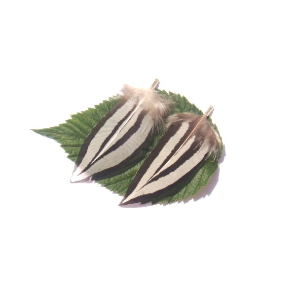 Pendentifs plumes Faisan Argenté : Paire 6 CM de hauteur environ x 3 CM - Photo n°1