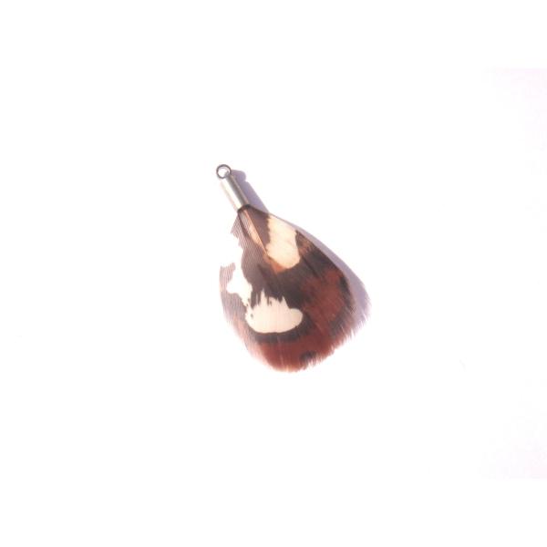 Faisan naturel : MINI pendentif 3.2 CM de hauteur x 2 CM de largeur max - Photo n°3