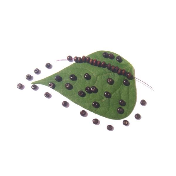 Lot 100 Perles Bois teinté Marron Foncé 4 MM de diamètre x 3 MM de tranche - Photo n°1
