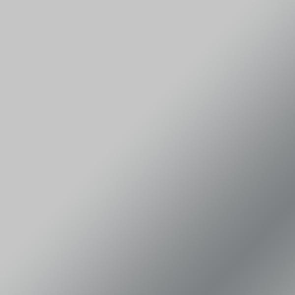 Flex thermocollant EveryDay Cricut Maker - Argenté - 30,5 x 60,9 cm - Photo n°2