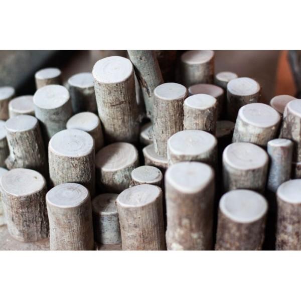 Troncs naturels en bois - Photo n°2