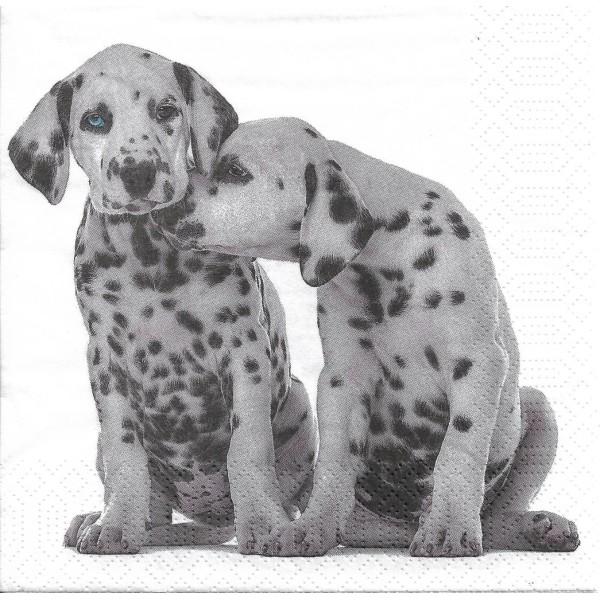4 Serviettes en papier Bio Chiens Dalmatiens Format Lunch Decoupage Decopatch 191970 Paper+Design - Photo n°1