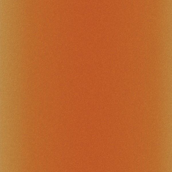 Infusible Ink à motifs Cricut Maker - Animals - 30,5 x 30,5 cm - 4 feuilles - Photo n°2