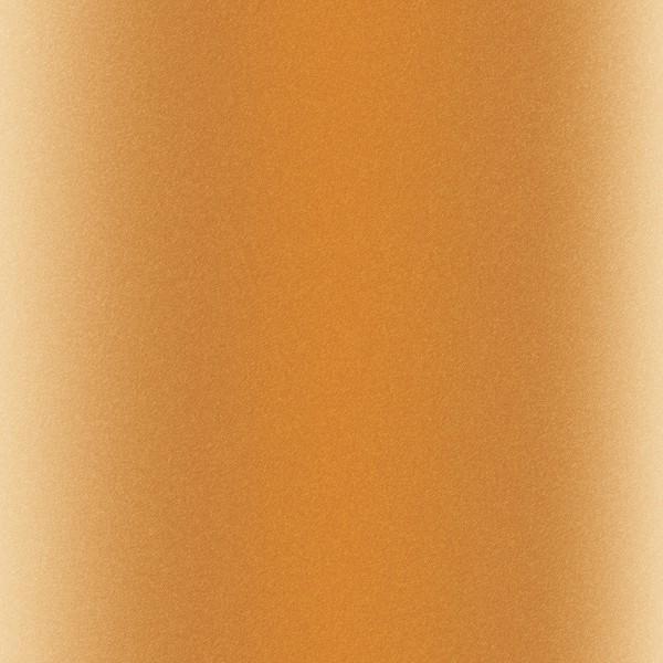 Infusible Ink à motifs Cricut Maker - Animals - 30,5 x 30,5 cm - 4 feuilles - Photo n°5