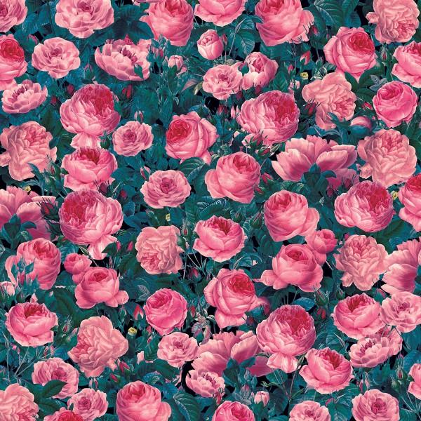 Infusible Ink à motifs Cricut Maker - Cabbage Roses - 30,5 x 30,5 cm - 2 feuilles - Photo n°2