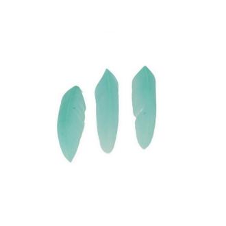 20 Plumes 7x2cm Bleu-vert