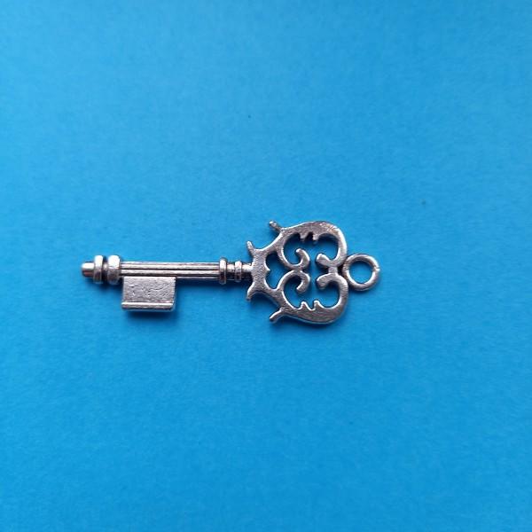 Prenez la clé des champs , breloque ou pendentif - Photo n°1