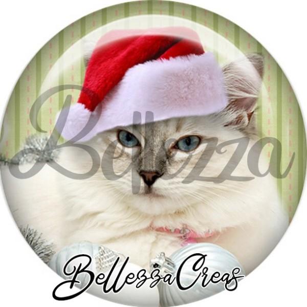 Cabochon, chat blanc bonnet noël,Noël, évènement, plusieurs tailles disponibles - Photo n°1