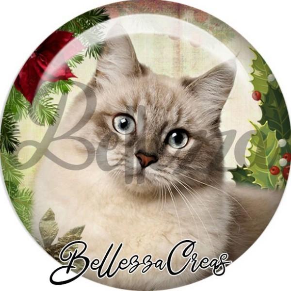 Cabochon, chat gris houx de noël,Noël, évènement, plusieurs tailles disponibles - Photo n°1