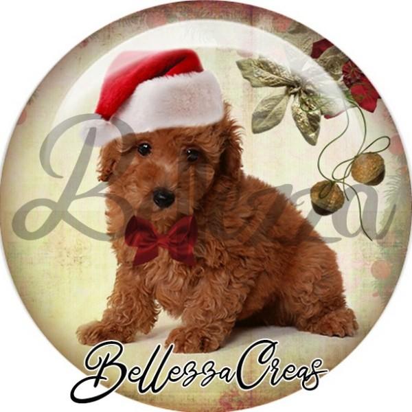 Cabochon, caniche brun bonnet noeud noël,Noël, évènement, plusieurs tailles disponibles - Photo n°1
