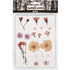 Assortiment de fleurs séchées et préssées - Rose Clair - 20 pcs