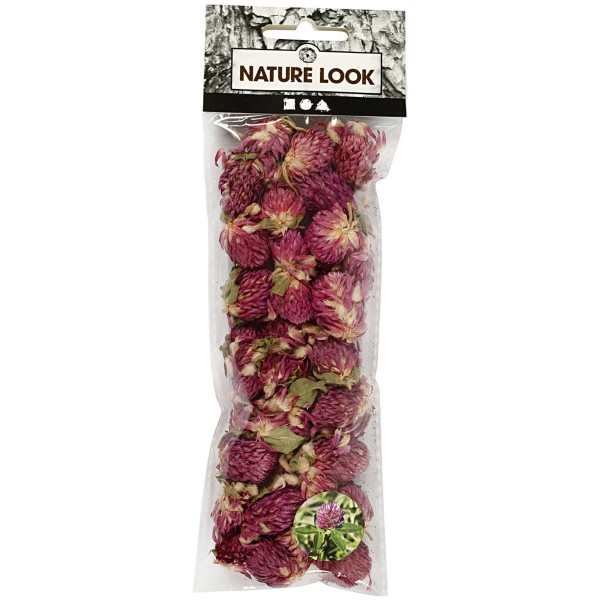 Fleurs Séchées - Trèfle rouge - 15 g - Photo n°2