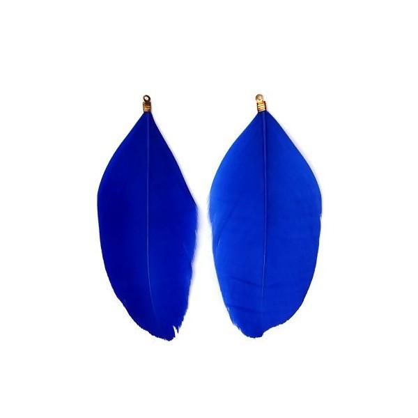 PS110110027 PAX 10 Plumes Naturelles 85 mm avec embouts doré Bleu Roi - Photo n°1