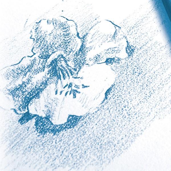 Bloc à dessin à grain 180g - A5 - 30 pages - Photo n°3