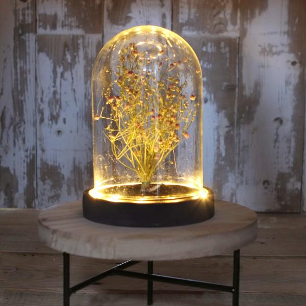 Cloche en verre avec socle noir lumineux- 12 x 16,5 cm - Photo n°2