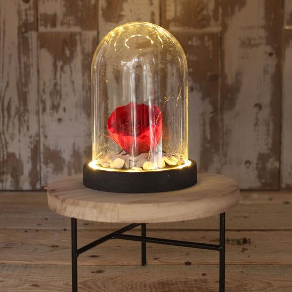 Cloche en verre avec socle noir lumineux- 12 x 16,5 cm - Photo n°3