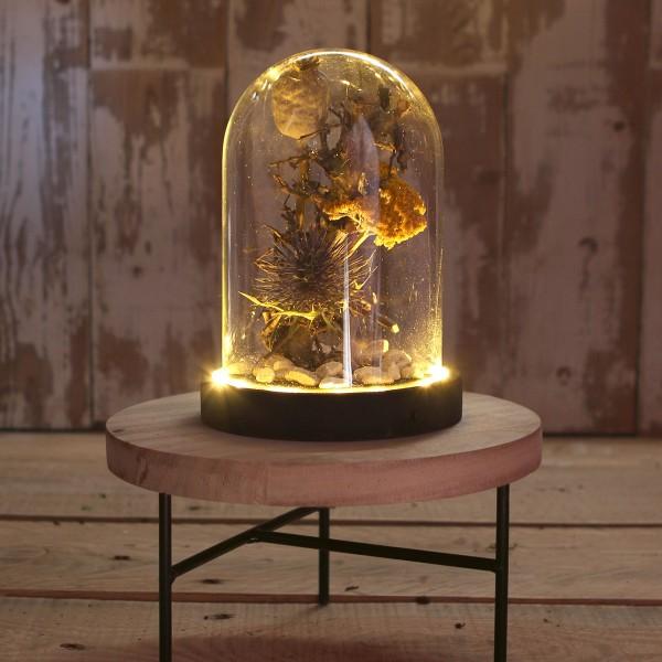 Cloche en verre avec socle noir lumineux- 12 x 16,5 cm - Photo n°4