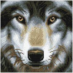 Kit Crystal Art - Tableau Loup - 30 x 30 cm