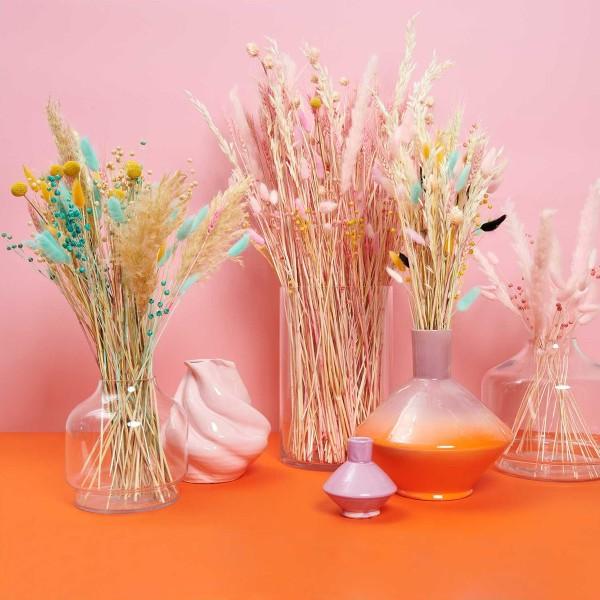 Fleurs séchées - Lin Turquoise - 100 g - Photo n°5