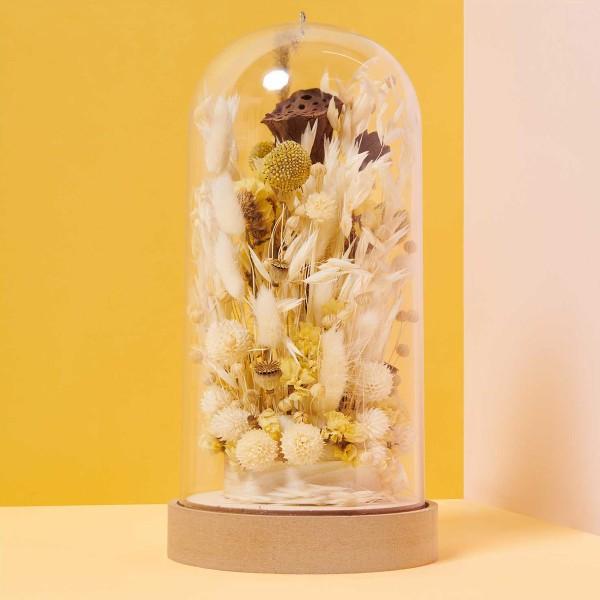 Fleurs séchées - Cardère naturel - 50 g - Photo n°3