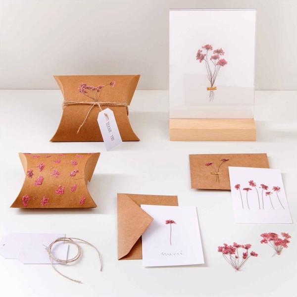 Fleurs pressées - Ammi branche rose - 4,5 x 6 cm - 4 pcs - Photo n°2