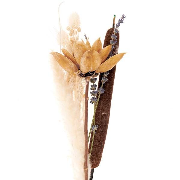 Bouquet de fleurs séchées - Naturel - 30 cm - Photo n°3