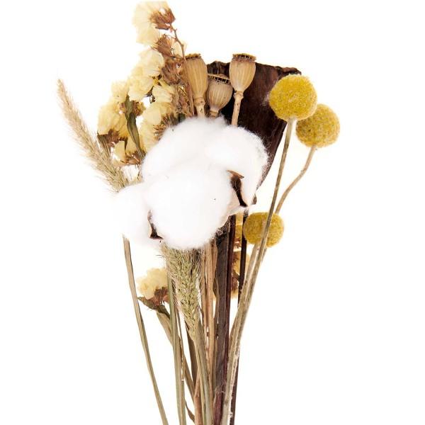 Bouquet de fleurs séchées - Nature Jaune - 30 cm - Photo n°3