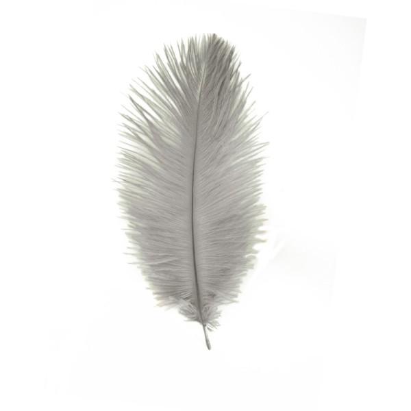 lot 2 grandes plumes faisan 40  cm