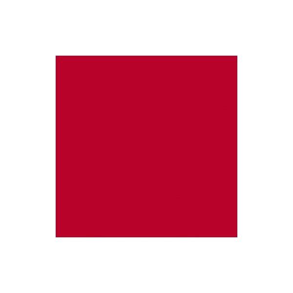 Laine rouge à feutrer Merino superfin 19,5 mic., 50 g - Photo n°2