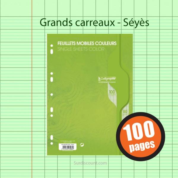 Feuillets Mobiles Perforées Vert 21X29,7 A4 Grands Carreaux Seyes 90G Clairefontaine - Photo n°1