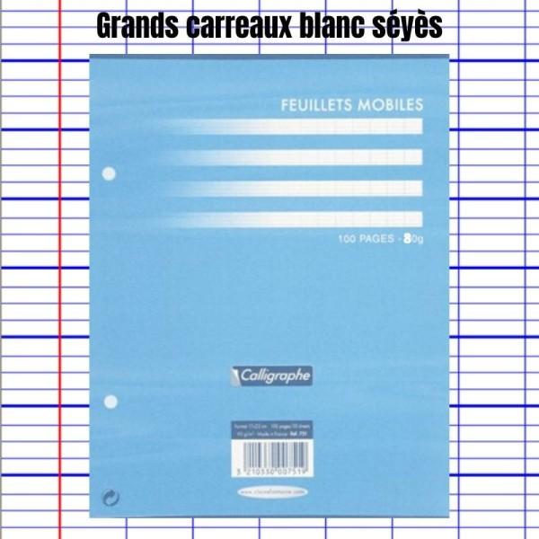 Feuillets Mobiles Blanc Perforées 17X22 Grands Carreaux Seyes 80G Clairefontaine - Photo n°1