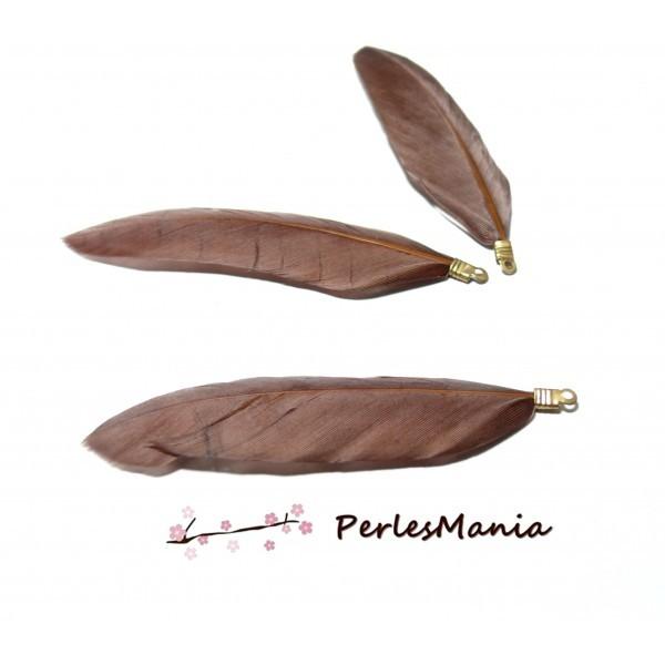 PS1183975 PAX 10 Plumes Naturelles avec embouts doré Marron - Photo n°1