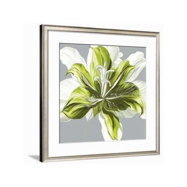 Image 3D - FP99218 - 30x30 - Printemps vert n°1 - Photo n°2