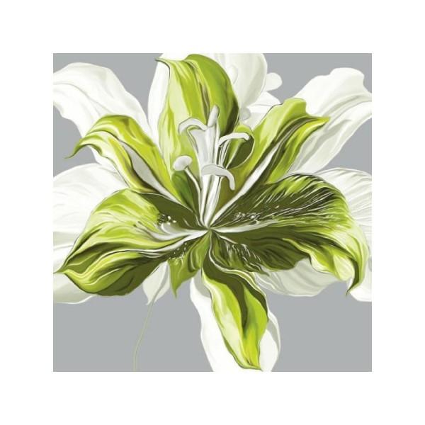 Image 3D - FP99218 - 30x30 - Printemps vert n°1 - Photo n°1