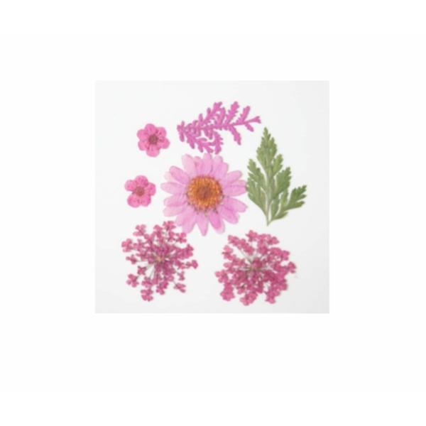 1pc Rose Mélange Pressé Séché Fleur Feuille Ammi Plantes Sèches Époxy Uv Résine Pendentif Collier Na - Photo n°1